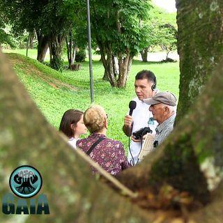 NUESTRO OXÍGENO La vida canta en el bosque de Riveras del Rosario - Mariela Zuluaga