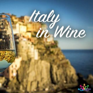 005 - Italia in Vino - Il vino in Italia