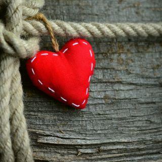 12 APPUNTI DI MORALE - Va dove ti porta il cuore