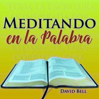 MelP_238 - Santiago_1_18
