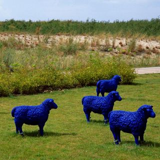 Die blauen Schafe – Ausflug in die Berge wird zum Horror-Trip