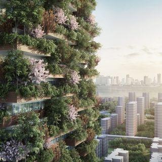 Da Milano alla Cina: le foreste verticali crescono