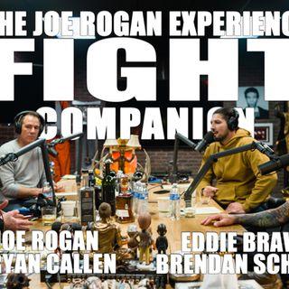 Fight Companion - January 9, 2020
