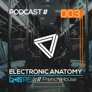 Electronic Anatomy Podcast 003 with Rea | French House DJ Mix