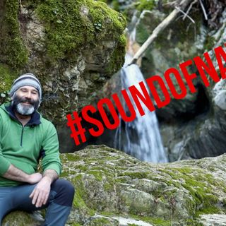SI INIZIA A REGISTRARE PER #SOUNDOFNATURE