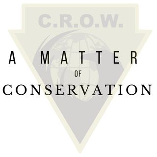 Conservation in Zimbabwe