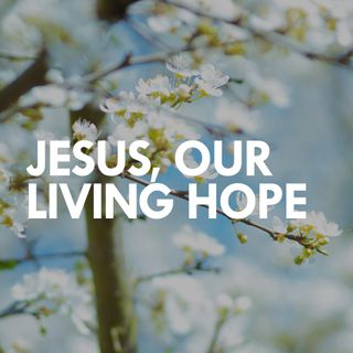 Jesus, Our Living Hope - Daniel Chong