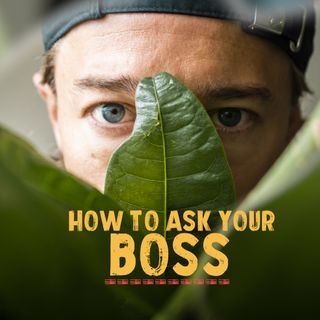 How to ask your boss about working abroad? EP1