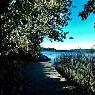 Elk Lake Mash