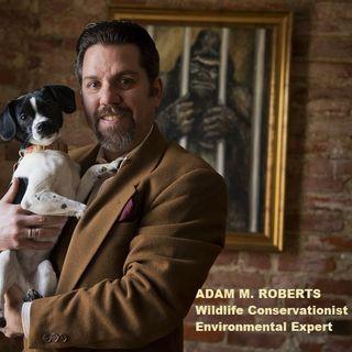 Big Blend Radio: Backyard Habitats and Humane Gardening