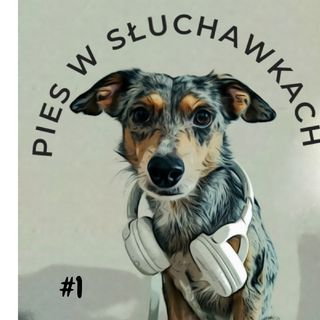 #1 O czym musisz wiedzieć zanim zaczniesz pracować ze swoim psem?
