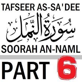 Soorah an-Naml Part 6: Verses 22-35