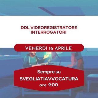 DDL VIDEOREGISTRATORE INTERROGATORI  #SvegliatiAvvocatura