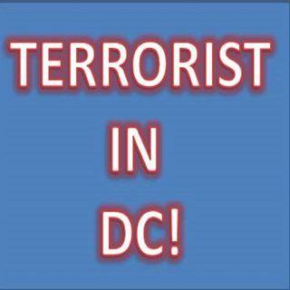 DONALD J TRUMP IS A TERRORIST LEADER! NO GRAY! @REALDONALDTRUMP #REPUBLICANS