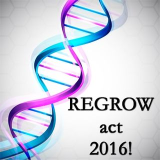 Bernard Siegel: REGROW act of 2016!