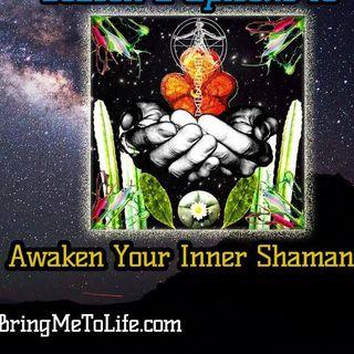 Ep. 61 Awakening Our Inner Shaman