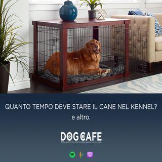 #068 - Q&a quanto tempo deve stare il cane nel kennel e altro