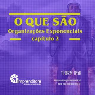 Características das Organizações Exponenciais | Capítulo 2