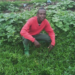 Mpema story 1