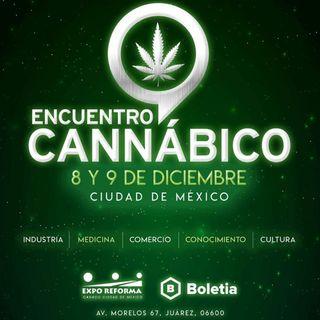 Encuentro Cannábico en vivo McClopedia