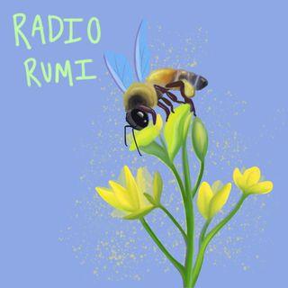 Radio Rumi Program 38: I am the light from the candle, I am the smoke from the candle!