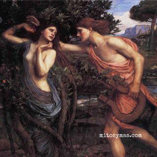 Apolo, Dafne, Leucipo, y una corona de laurel.