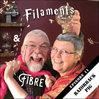 Episode 11 – Filaments and Fibre EP11: Razorback Pig