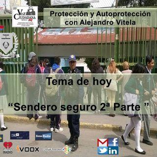 Proteccion y Autoproteccion