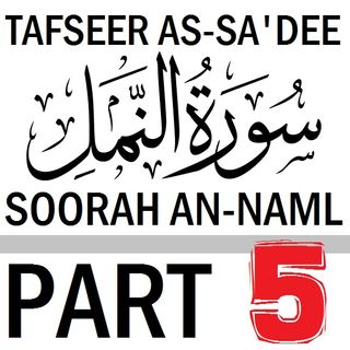 Soorah an-Naml Part 5: Verses 20-21