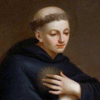 130 - Storie di Sancio, S. Nicola da Tolentino e dei due frati di Zamora