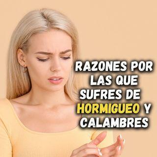 - RAZONES POR LAS QUE SUFRES DE  HORMIGUEO Y CALAMBRES -