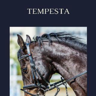 TEMPESTA 4/6  Part.