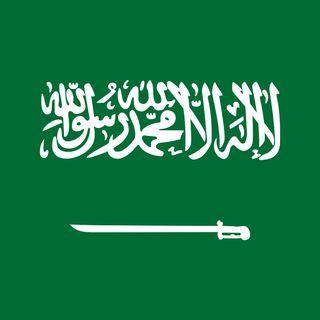 Salehassaleh.com