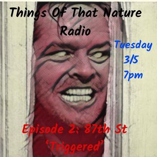 "Episode #2 | 87th Street - ""Triggered"""