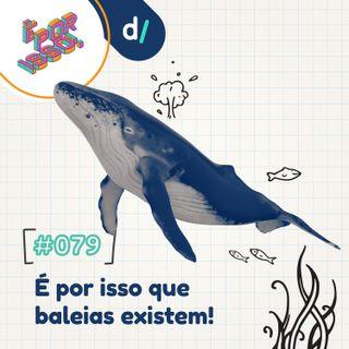 É Por Isso! #79 - É por isso que baleias existem! 🐳