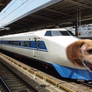 #cr I treni che abbaiano?