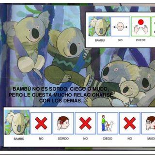 Bambù il Koala autistico