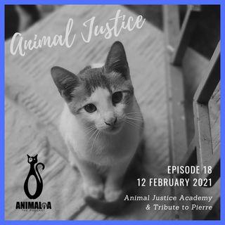 ANIMALIA 18 - Animal Justice - 12Feb21