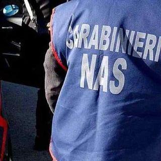 Covid, 232 ispezioni dei carabinieri dei Nas nelle Rsa: irregolarità in 37 strutture