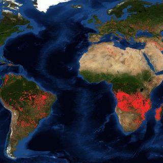 L'Africa brucia
