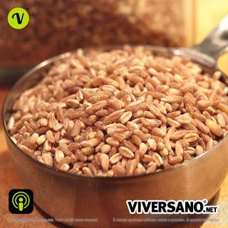 Farro: un cereale ricco di benefici