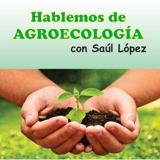 Ep 3 Hablemos de Agro ecología: Orígenes, historia y principios de agro ecologia.
