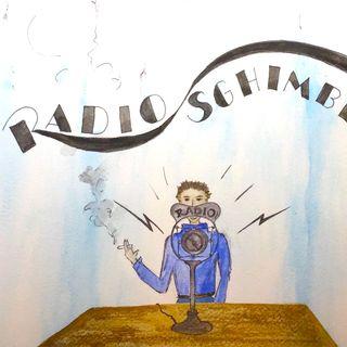 Radio Sghimbescia 16