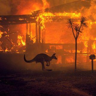 Che cosa c'entrano gli incendi in Australia con i cambiamenti climatici?
