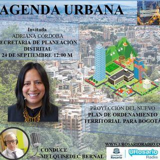 El POT de Bogotá