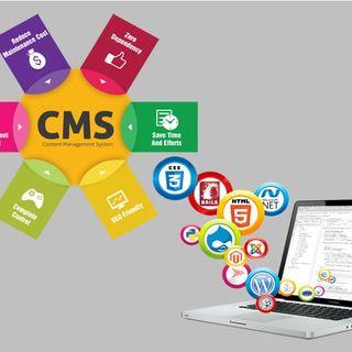 cmswebsites.com)