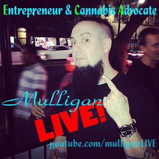 F--- Fake Entrepreneurs and their Pyramid (MLM) Schemes - Mulligan LIVE! clip from live feed