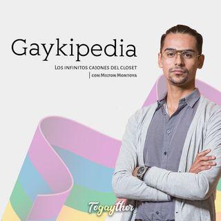 El gen gay