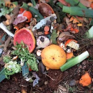 I nostri rifiuti alimenteranno  gli autobus Apam
