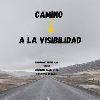 Camino a la visibilidad: 1300 kilómetros en un mes